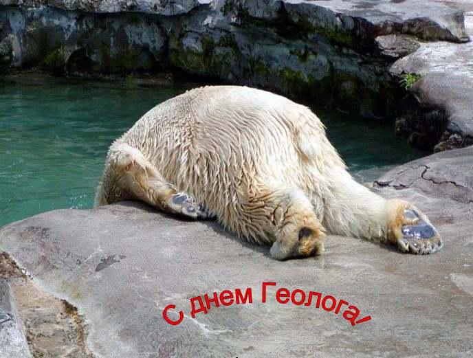 http://geological.narod.ru/POZDRAV/D_GEOLOG/dg2006med.jpg